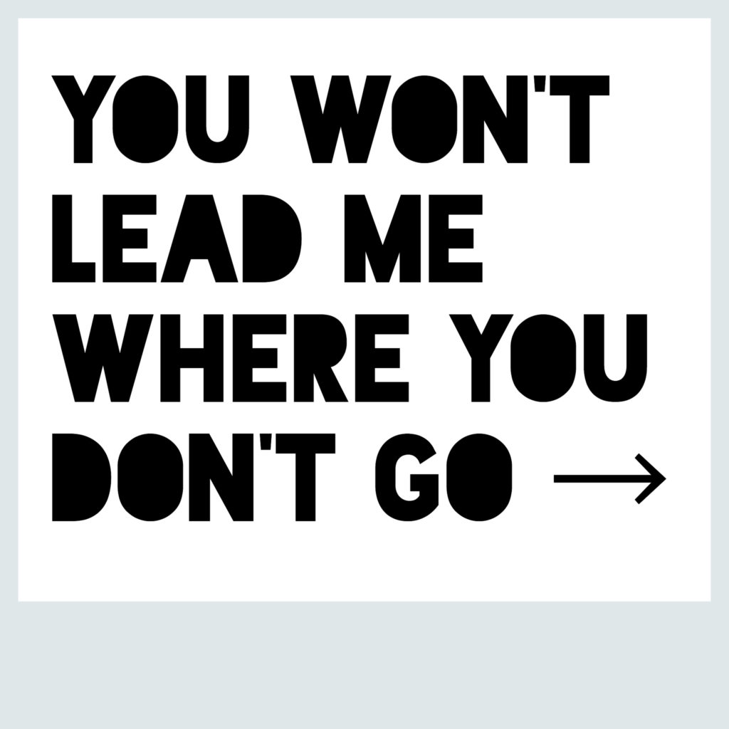 You Won't Lead Me Where You Don't Go